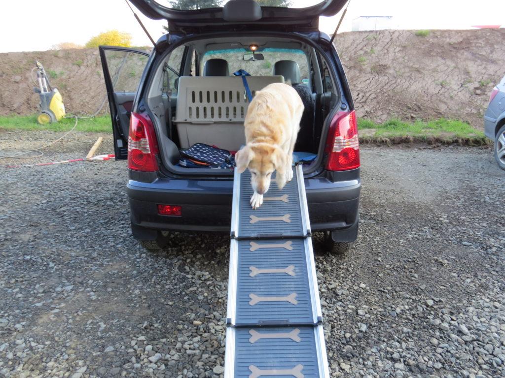 Neues Auto mit Rampe für den Hund