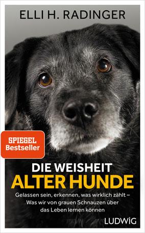 Die Weisheit Alter Hunde Spiegel Bestseller Elli H Radinger